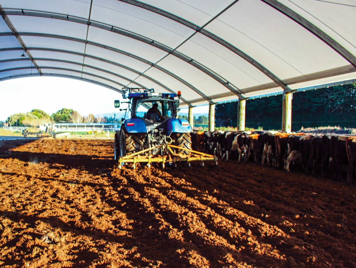 Maintaining your shelter for diary farming